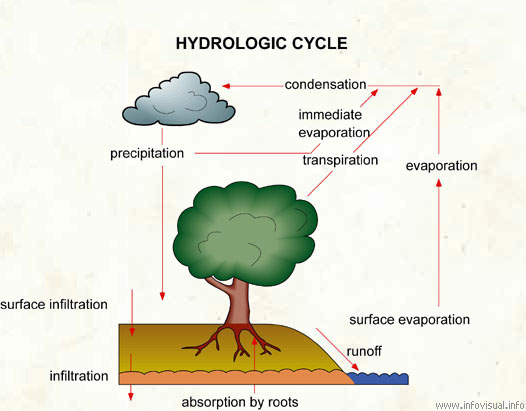 Hydrologic cycle visual dictionary ccuart Image collections