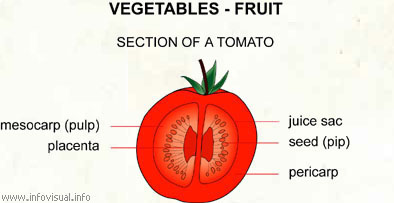 Vegetables - fruit