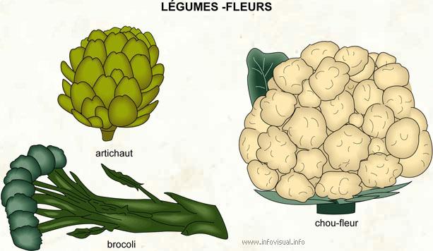Légumes - fleurs