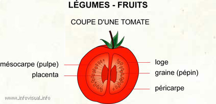 Légumes - fruits