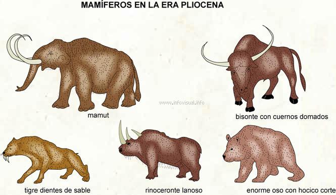 Pliocena