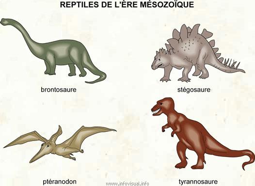 Mésozoïque