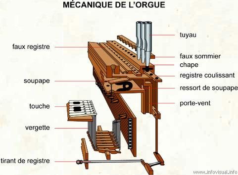 Mécanique de l'orgue