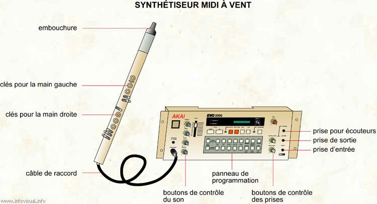 Synthétiseur à vent midi