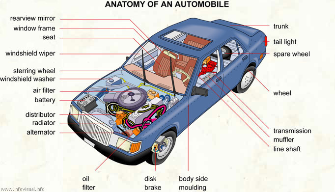 Anatomy of an automobile - Visual Dictionary