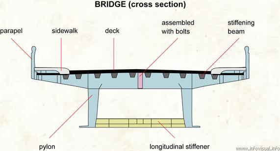 Bridge (cross section)