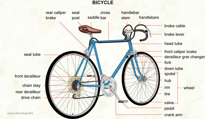 Bicycle Visual Dictionary