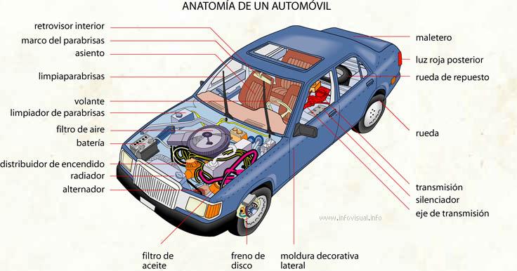 Anatomía de un automóvil
