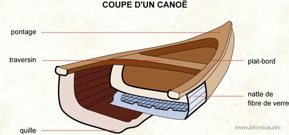 Coupe d'un canoe