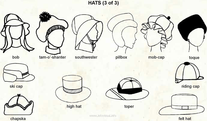 6ef5f29584b Hats 3 - Visual Dictionary