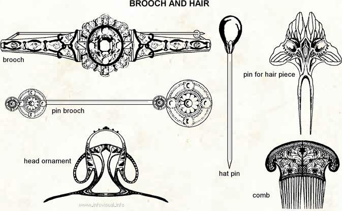 Brooch and hair