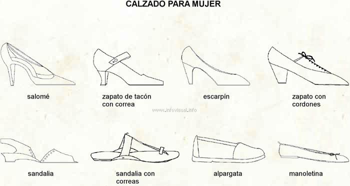 Calzado Para Mujer El Diccionario Visual