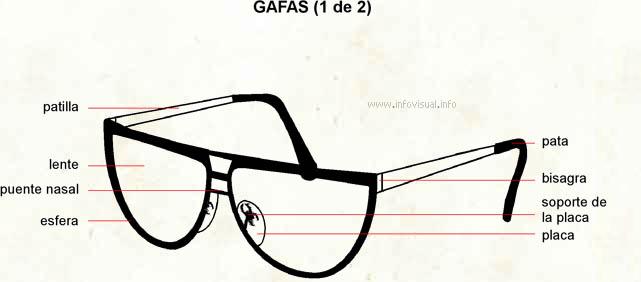 Gafa - El Diccionario Visual